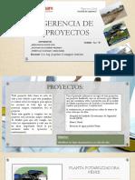 Gerencia de Proyectos Exposicion Mejia-pilligua-Verduga