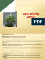 4 vase si substrat pt. bonsai.pdf