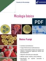 Aula 12- Micologia Básica