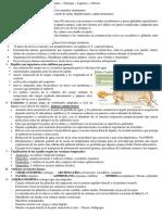 zoologiarepasofinal1