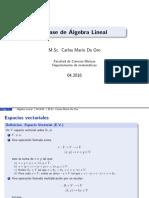 EspacioVectorial.pdf