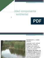 actividad componente ambiental