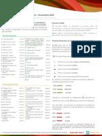 informe conexion sing.pdf
