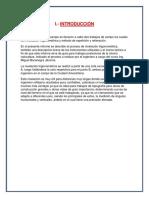 Informe 7 de topo.docx