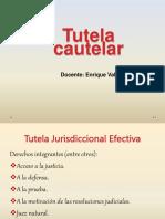 Procedimiento cautelar. 2015.pdf