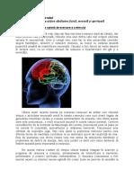 Antrenarea creierului.docx