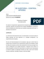 Informe de Auditoria – Control Interno