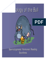 Andrology Bull