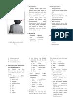 Leaflet Dm