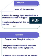 What are Enzymes - Examville Study Guides