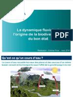 10_03_Dynamique_fluv_Biodiv_BE