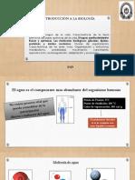 UNIDAD II CLASE II.pdf