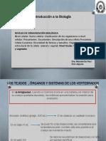 Unidad III Tejidos animales y vegetales 2019.pdf