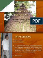Clase 1 Introduccion Dendrologia Tropical 2013