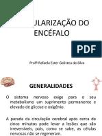 vascularizaodoencfalo-131010204547-phpapp01