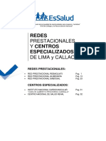 DIRECTORI_Redes_Lima