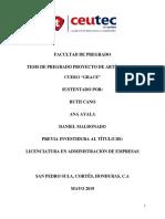 Proyecto de graduación III avance.docx