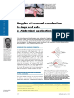 Doppler Ultrasound Examination in Dogs and Cats 2. Abdominal Applications