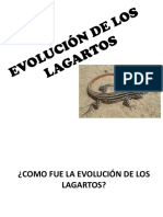 Evolución de Los Lagartos