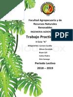 Informe de botanica.docx