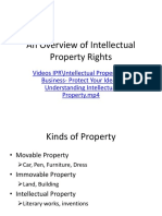 An Overview of Intellectual Property (1)