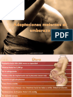 Adaptaciones Maternas Al Embarazo