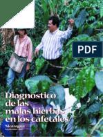 Diagnòstico de Las Malas Hierbas en Cafetales