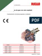 riello_libretto_installatore_rs_34_44_e_mz_20068133_2_es__rev2.pdf