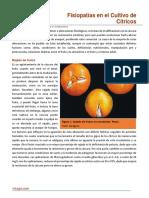 Sin título (11).pdf