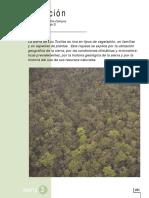LaVegetacion.pdf