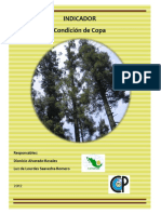 Manual Indicadores de Copa.pdf