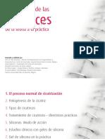 17552 trat cicatrices diapos OK.pdf