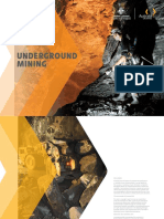 Underground Mining Industry Capability Report