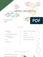 ingeniera-gentica-160212120053