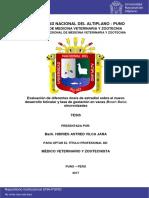 Vilca_Jara_Hidries_Astred.pdf