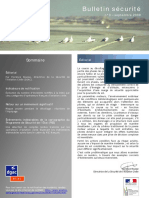 Objectif Securite 03 - Bird Hazard at Take-Off