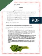 plantas medicinales no eliminar.docx