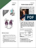 ACET-Metab Do Glicogenio e Gliconeogenese Pag1-20
