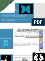 333641072 Braier Eduardo Psicoterapia Breve PDF
