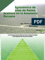 Manejo Palma Aceitera - Exposicion Sta. Lucia