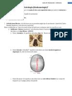 2°Clase Anatomia 2015