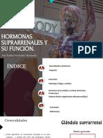 Hormonas-suprarrenales (1).pdf