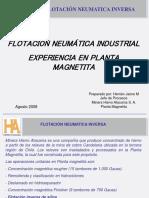 4_Flotación Neumática Industrial