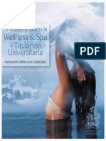 Diplomado en Direccion y Gerencia Wellness & Spa
