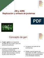 ADN ARN1