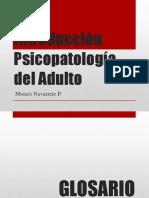 Introducción Psicopatologia Adulto