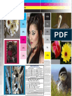 pgg_print sample_093005.pdf