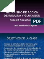insulina-glucagon 2007