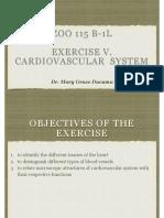 Exercise v. Cardiovascular System