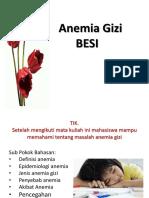 Anemia Gizi Besi
